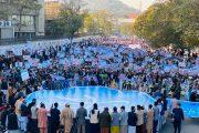 نجم، گردهمایی مردمی را در تقبیح جنایات دولت فرانسه در شهر کابل برگزار نمود